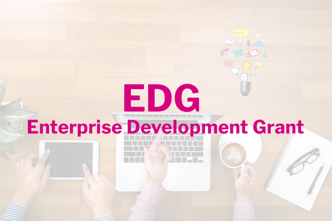 Enterprise Development Grant