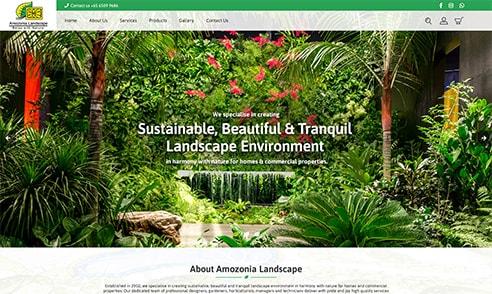 Amozonia Landscape