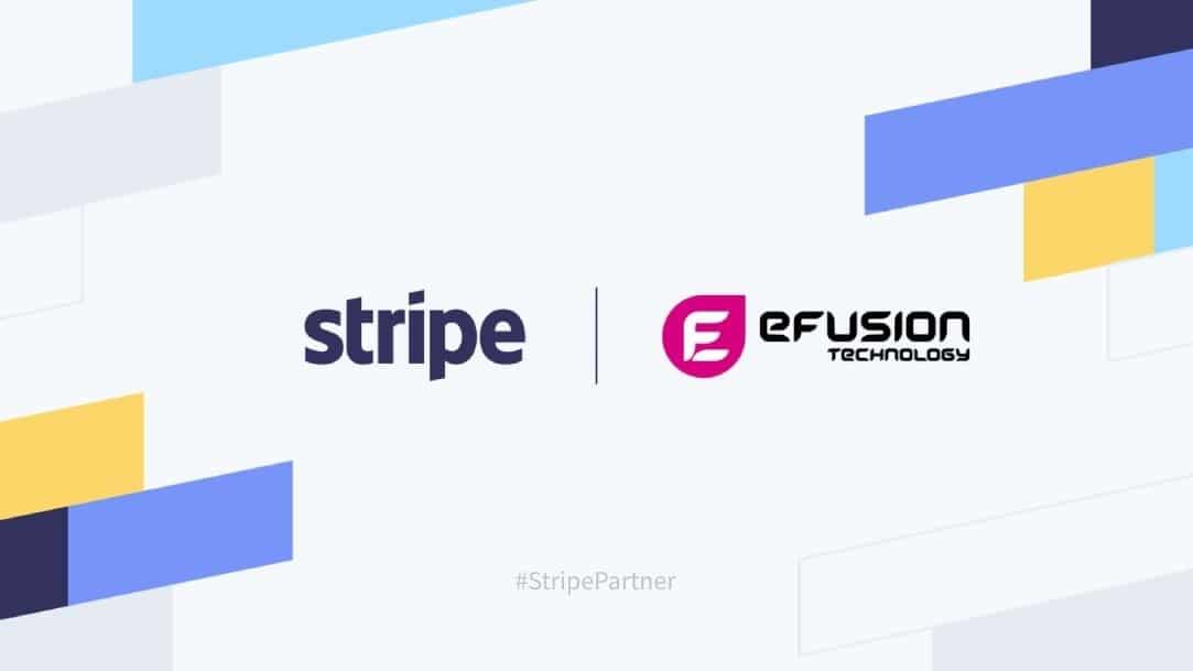 stripe efusion partnership